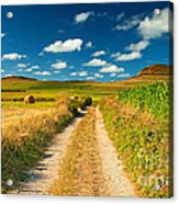 Nice Landscape Summer Acrylic Print by Boon Mee