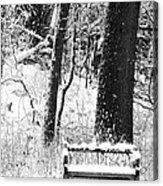 Nichols Arboretum Acrylic Print