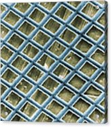 Nickel Electron Micrograph Grid Acrylic Print by David M. Phillips