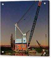 Night Crane Acrylic Print