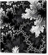 Night Frost Acrylic Print
