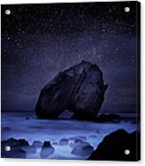 Night Guardian Acrylic Print