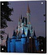 Night Illuminates Cinderella Castle Acrylic Print