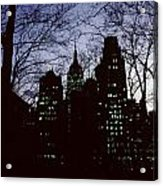 Night Lights Empire State Two Trees Acrylic Print