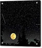 Night Moves Acrylic Print