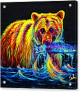 Night Of The Grizzly Acrylic Print by Teshia Art