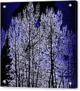 Night Of The Wolf Acrylic Print