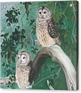 Night Owls Acrylic Print