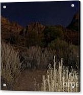Night Sky Over Zion II Acrylic Print