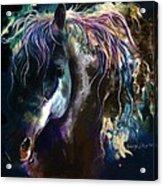 Night Stallion Acrylic Print