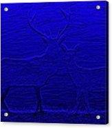 Night View With Deers Digital Painting Acrylic Print