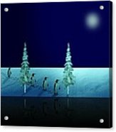 Night Walk Of The Penguins 2.5 Acrylic Print