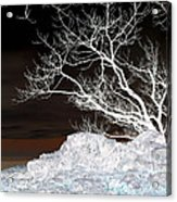 Nightfall Negative Acrylic Print