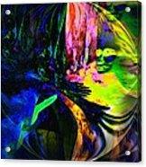 Nightly Rendezvous Acrylic Print