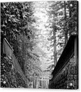 Nikko Pathway And Fog Acrylic Print