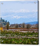 Nisqually Delta Of The Nisqually National Wildlife Refuge Acrylic Print