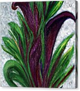 No. 028 Purple Callas Acrylic Print