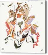 No. 1023 Acrylic Print