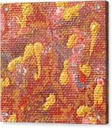 No 27 Brocade Acrylic Print