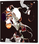 No. 629 Acrylic Print