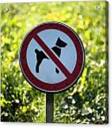 No Dogs Allowed Sign Acrylic Print