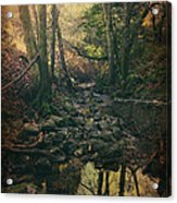 No Matter How Far Acrylic Print by Laurie Search