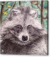 Stop Fur Trade  Acrylic Print