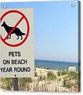 No Pets Acrylic Print