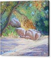 No Water At Cienega Creek Acrylic Print