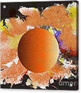 No.786 Acrylic Print