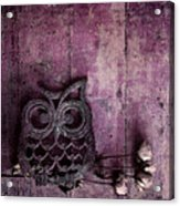 Nocturnal In Pink Acrylic Print