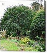 Norfolk Botanical Gardens 10 Acrylic Print