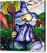 Norm The Little Old Wizard Acrylic Print