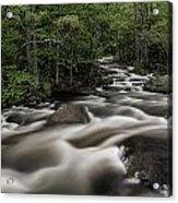 North Branch Greenery Acrylic Print