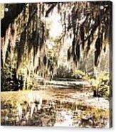 North Carolina 8 Acrylic Print