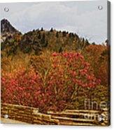 North Carolina Beauty Acrylic Print