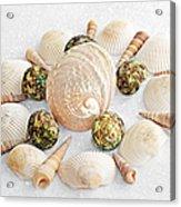 North Carolina Circle Of Sea Shells Acrylic Print