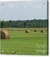 North Country Haystacks Acrylic Print by Kevin Croitz