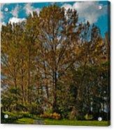 North Lions Park In Mount Vernon Washington Acrylic Print