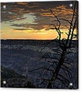 North Rim Dawn Acrylic Print
