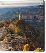 North Rim Grand Canyon Arizona Point Imperial Bathed By Sunrise Golden Light. Acrylic Print