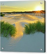 North Sea Sandbank Kniepsand Acrylic Print
