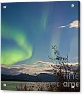 Northern Lights Full Moon Over Lake Laberge Yukon Acrylic Print