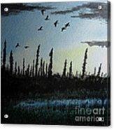 Northern Limit Acrylic Print