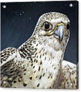 Northern Star Acrylic Print