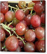 Not Sour Grapes Acrylic Print