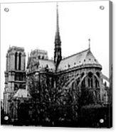 Notre Dame Acrylic Print by Rita Haeussler