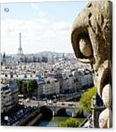 Notre Dame View From The Roof Acrylic Print