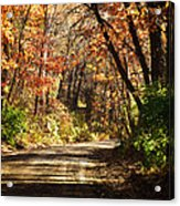November Colors 5 Acrylic Print