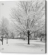 November Snow Acrylic Print